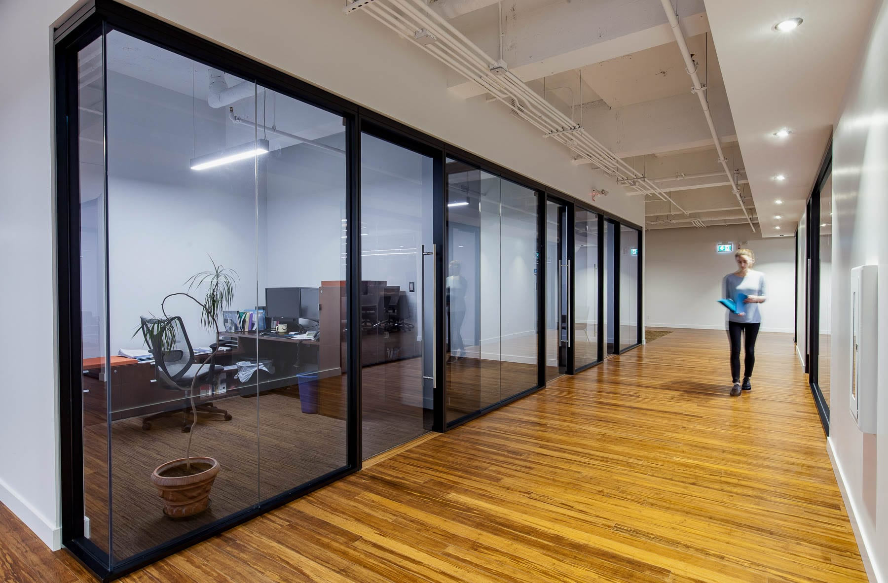 Contemporary Office TI at MIABC - corridor and offices with glazed modular walls